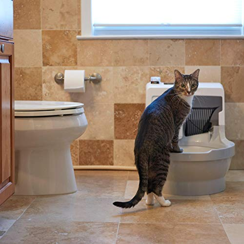 CatGenie 120 Self-Washing, Self-Washing Cat Box