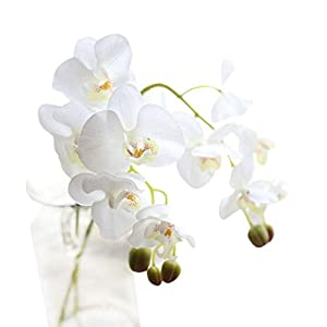 Vibola® Vivid Real Touch Phalaenopsis Artificial Flowers Fake Plant Silicone Flower Arrangement Wedding Bouquet Party Home Decorative (Vase not included) 6