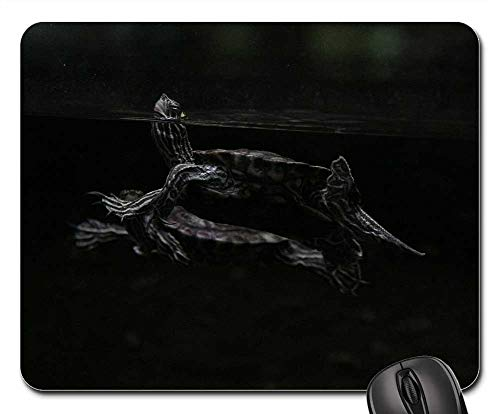 Mouse Pads - Animal Lake Reptiles River Swimming ()