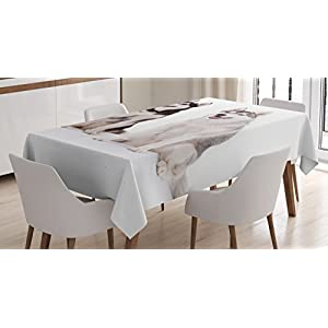 "Ambesonne Alaskan Malamute Tablecloth, Furry Arctic Doggies Husky Whelp Pedigree Pet Happy Siberian Mammal, Dining Room Kitchen Rectangular Table Cover, 52"" X 70"", White Brown 20"