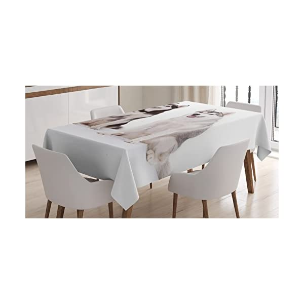 "Ambesonne Alaskan Malamute Tablecloth, Furry Arctic Doggies Husky Whelp Pedigree Pet Happy Siberian Mammal, Dining Room Kitchen Rectangular Table Cover, 52"" X 70"", White Brown 1"