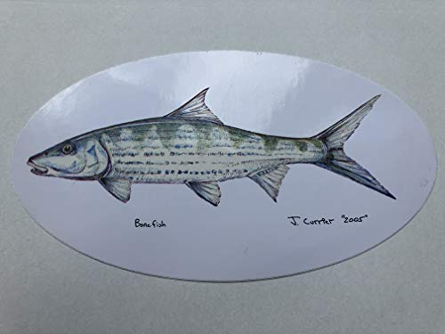 Pescador on the Fly | Fish Decals | Designed by Jeff Currier | Stunning Detail | Great Gift Idea for Fisherman | Bonefish