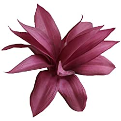 Conjugal Bliss 1PC Plastic Artificial Cactus Plant Agave DIY Materials Succulents Plants Flower for Office Home Garden Wedding Gift Decorative Fake Flowers (Purple)
