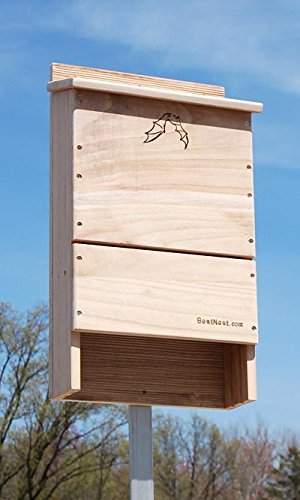 BestNest Triple-Celled Bat House, 250 bats