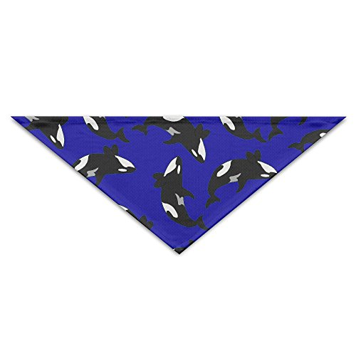 Logic Theory Killer Whale Orcas Pet Scarf Dog
