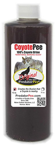Predator Pee 100% Coyote Urine - Territorial Marking Scent - Creates Illusion That Coyote is Nearby - 12 oz Squeeze
