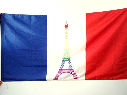 AZ FLAG France Rainbow Flag 2' x 3' for a Pole - French Gay - Eiffel Tower Flags 60 x 90 cm - Banner 2x3 ft with Hole (2ft Eiffel Tower)