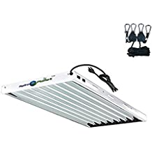 Hydroplanet T5 4ft 8lamp Fluorescent Ho Bulbs Included for Indoor Horticulture Gardening T5 Grow Lights Fixtures (8 Lamp, 4ft)