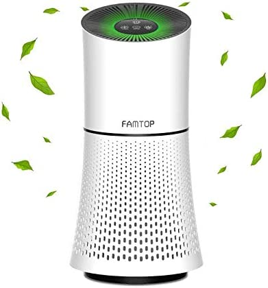 Famtop Filter Air Purifiers, 4-in-1 True HEPA Air Cleaner for Home Office Bedrooms, Quiet Filtration System to Remove 99.97 Particles,Fur, Pollen, Smoke, Pets Smell and Other Household Smell