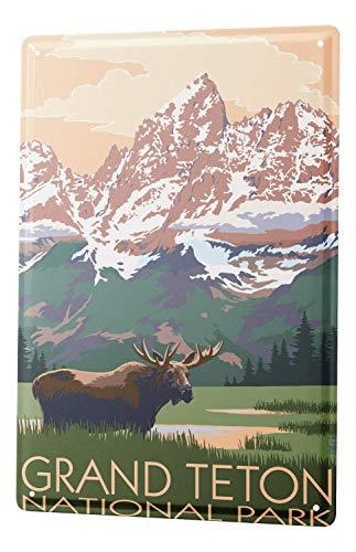 Joeaney New Tin Sign Aluminum Retro Globetrotter Grand Teton National Park for Men, Women, Unisex 8 X 12 Inch