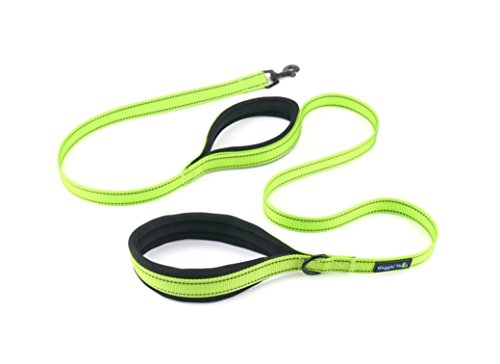 - Waggin Tails Soft & Thick 5FT Double Handle Leash with Neoprene Padded Handle for Small to Medium Dog (Neon Green)