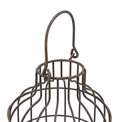 Stonebriar Rustic Metal Wire Cage Cloche Set with Rustic Wooden Bases, Industrial and Farmhouse Home Decor Accents, Display Flowers, Succulents, Air Plants, Fairy Lights, Decorative Fill, and More