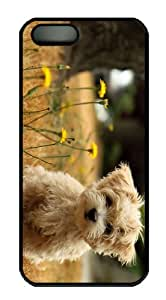 case underwater cover Cute Maltese Dog PC Black Case for iphone 5/5S