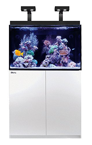 Red Sea 23295 Max E-270 Reef Spec Aquarium System with (Red Sea Max Reef Aquarium)