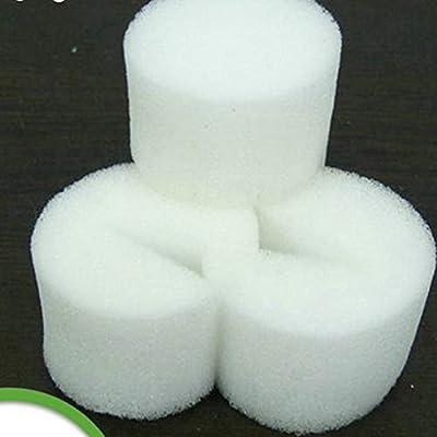 Yardwe 100PCS Hydroponics Sponges, Seed Growing Media Sponges for Hydroponics Net Cup Pots Baskets Garden Plants Germination Kits (44 mm): Garden & Outdoor
