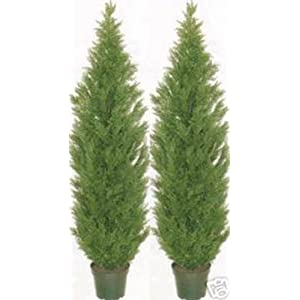 Two 5 Foot Artificial Topiary Cedar Trees Potted Indoor Outdoor Plants 2