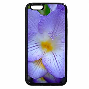 iPhone 6S / iPhone 6 Case (Black) Freesia