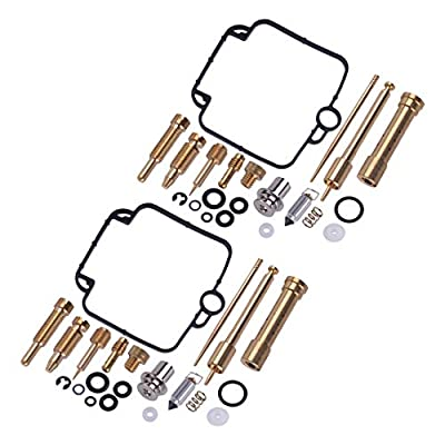 Eastar 2 Sets Carburetor Repair Rebuild Kit Fit for BMW F650 Mikuni BST33 GS500E: Automotive