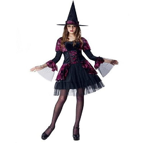 Super Cute Pink Gothic Witch Adult Halloween Costume