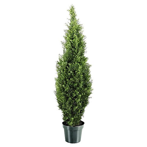 National Tree 48 Inch Arborvitae Tree in Dark Green Round Plastic Pot (LMC4-700-48-6) from National Tree Company