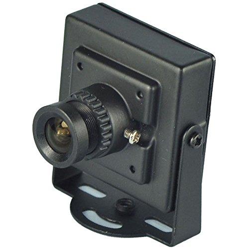 Ccd Pinhole Camera (BlueFishCam Wide Angle Lens 2.1mm Mini CCTV Camera SONY Color EFFIO-E CCD 700TVL Pinhole Camera Spy Camera Surveillance With Free Power)