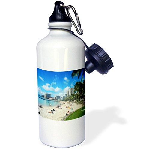 Waikiki Beach Honolulu (3dRose wb_107096_1