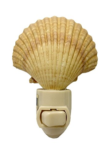 Natural Seashell Night Light Nautical Beach Decor (Mexican Deep) ()