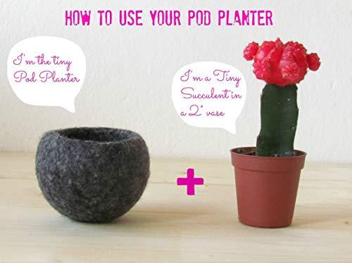 Hanging planter/Macrame plant hanger/Beige Felt planter/air plant vase/modern home decor/CHOOSE YOUR COLOR 3