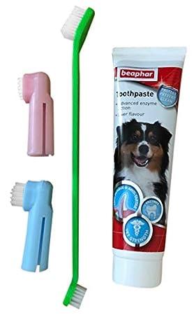 Tarot Health Pasta de Dientes para Perro y 3 cepillos de Dientes para Perros y Gatos: Amazon.es: Productos para mascotas