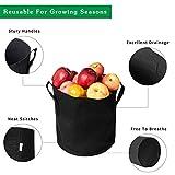 GDNaid 10-Pack 1 Gallon Grow Bags Plant Aeration