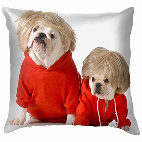 Cute Dogs Wearing Exercise Clothing Isolated Animals Wildlife Dog Holidays Soft Cotton Linen Cushion Cover Pillowcases Throw Pillow Decor Pillow Case Home Decor 16X16 Inch]()