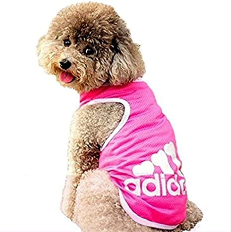 Haibuy Pet Adidog T-Shirt per Cani Canottiera in Cotone Maglia Estiva Traspirante per Cani Camicia per Cani di Taglia Piccola Colore: Blu Taglia Media,Taglia Grande per Cani S-8XL
