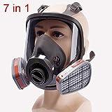 SHIXUE Full Face Respirator Respiratory