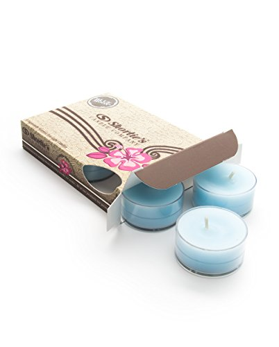Blue Moon Tealight Candles - Highly Scented with Natural Oils - 6 Blue Hand Poured Tea Lights - Clear Container for Beautiful Candlelight - Fresh & Clean Collection