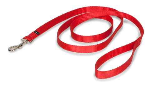 (Premier Pet Leash 3/4-Inch by 6-Feet Red - LSH-3/4-X-6-RED)