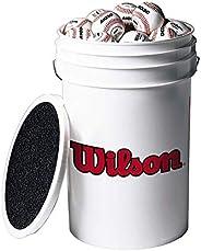Wilson Champion Series Baseballs