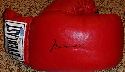 Muhammad Ali signed auto Online Auth boxing Everlast glove autograph - Steiner Sports Certified - Autographed Boxing Gloves
