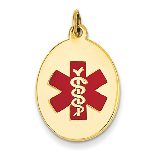 14 carats JewelryWeb Jewelry Pendentif médical