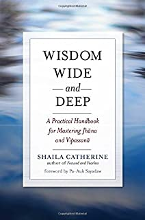 focused and fearless a meditators guide to states of deep joy calm and clarity