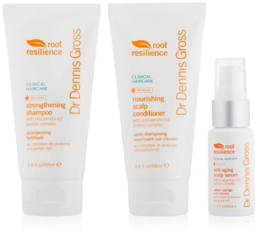 Dr. Dennis Gross Skincare Root Resilience Anti-Aging Hair Care Starter (Dr Dennis Gross Hair)