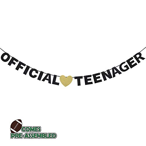 Official Teenager 13 Birthday Banner - Boys Girls 13th Birthday Ceremony Black Glitter Letters Garlands Décor - Thirteen Years Old Birthday Party Sign Decoration