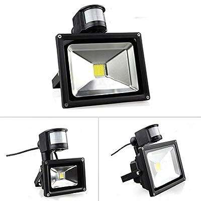 Warm White, 20W : Outdoor Lighting Floodlights 10W-30W White 800LM PIR Motion Sensor Security LED Flood Light 85-265V