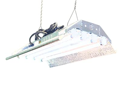 T5 Grow Light (2ft 4lamps) DL824 Ho Fluorescent Hydroponic Bloom Veg Daisy Chain with Bulbs