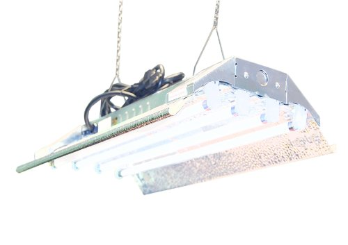 T5 Grow Light (2ft 4lamps) DL824 Ho Fluorescent Hydroponic Bloom Veg Daisy Chain with Bulbs (Best Fluorescent Bulbs For Growing Weed)