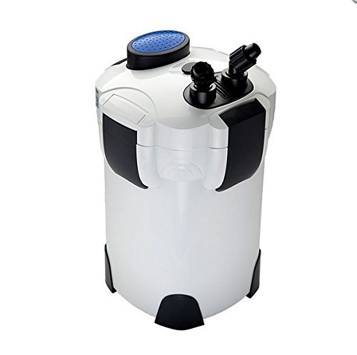 How to find the best fish tank filter 100 gallon canister for 2019?