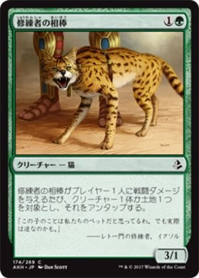 Magic: The Gathering / Initiate's Companion (174) - Amonkhet / A Japanese Single Individual Card