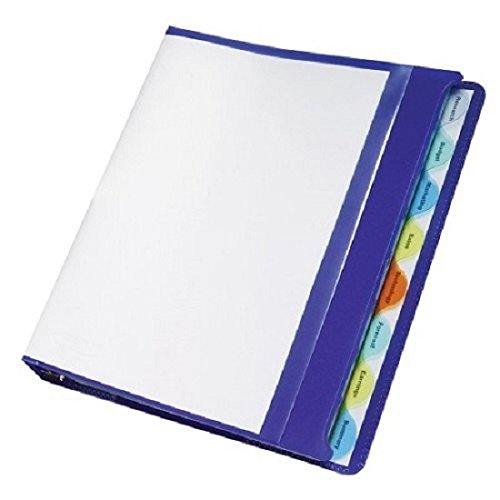 "Wilson Jones View-tab Presentation Binder, 1"" Capacity, 8.5"" x 11"" Sheet Size, Blue (W55096)"