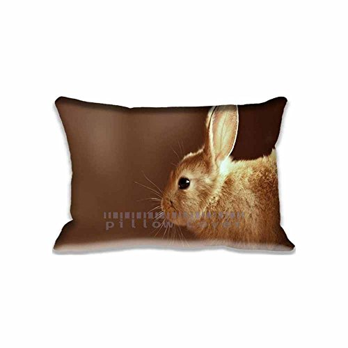 Custom Design Bunny Pillow Cases Zippered , Standard Queen Size Animals Pillowcase - 20X30inch Pets Cushion Covers Two Size Print ()