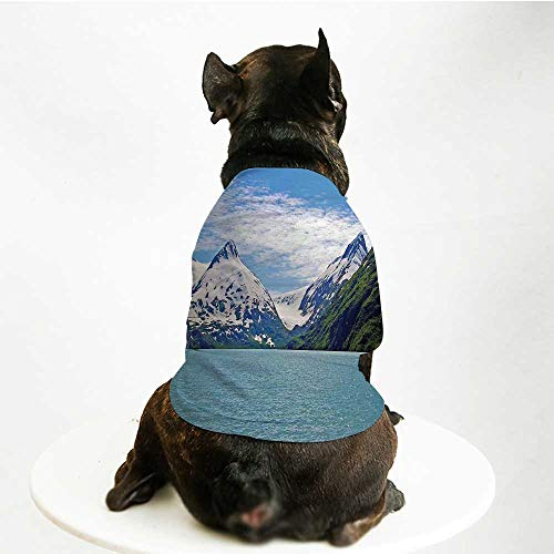 YOLIYANA Lake House Decor Skin Friendly Pet Suit,Mountain and Lake in Anchorage Alaska Springtime Sunny Day Scenic View Picture for Pet Dogs,L ()