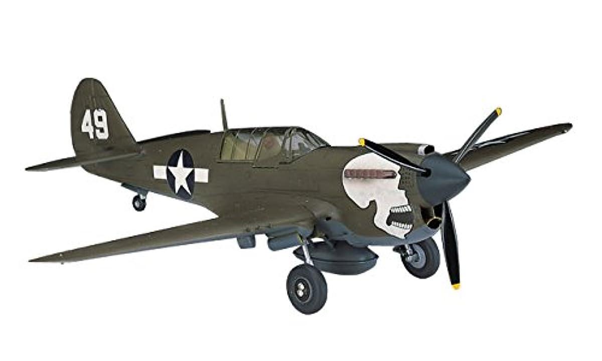 [해외] 하세가와 1/72 미국 육군 P-40N 우호쿠 프라모델  A9